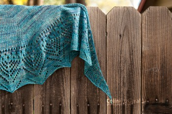 Post image for Citizen Shawl
