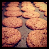 Post image for No Molasses Ginger Snaps (Spice Cookies)